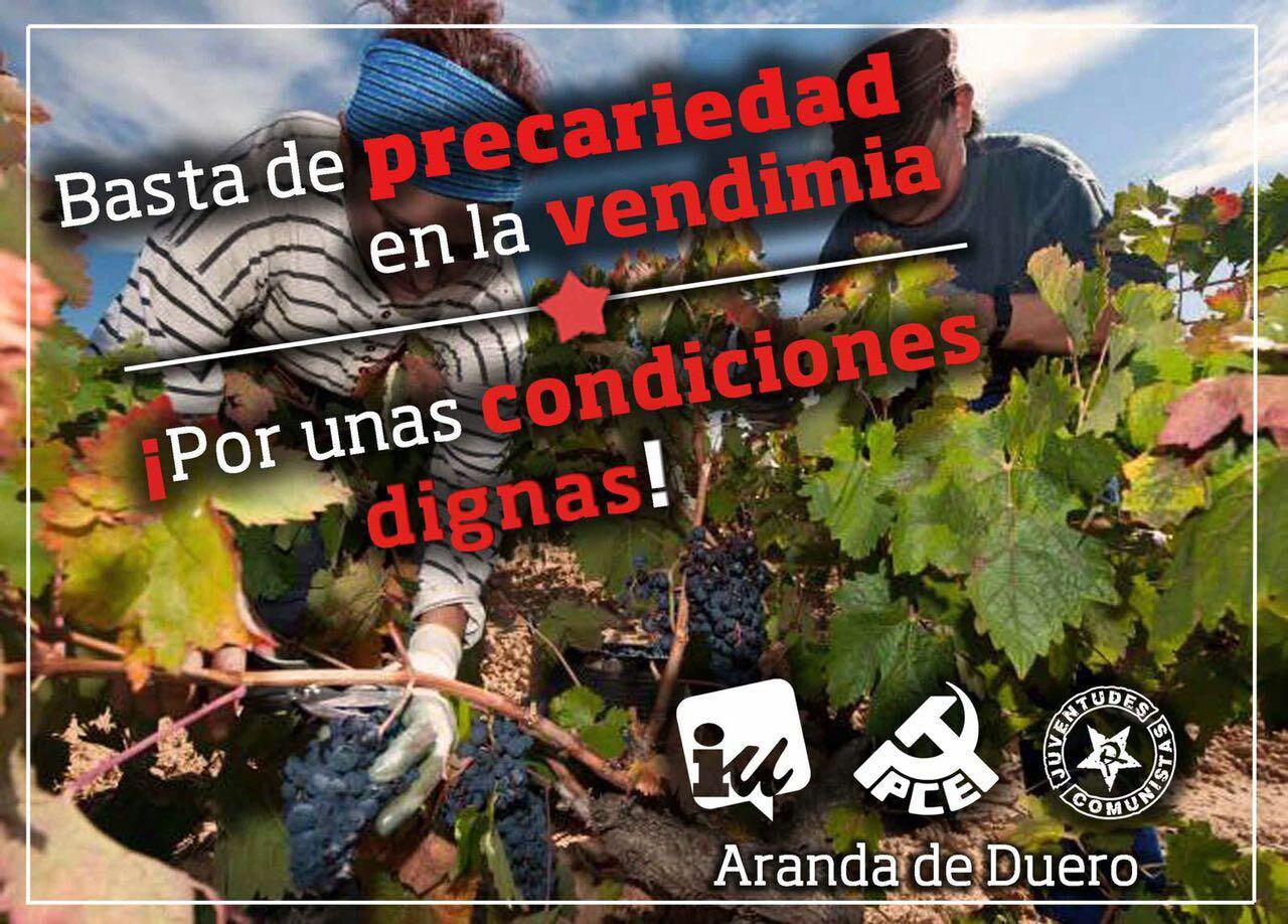 Photo of #QueNoNosJodanLaVida : Acabemos con la precariedad en la vendimia.